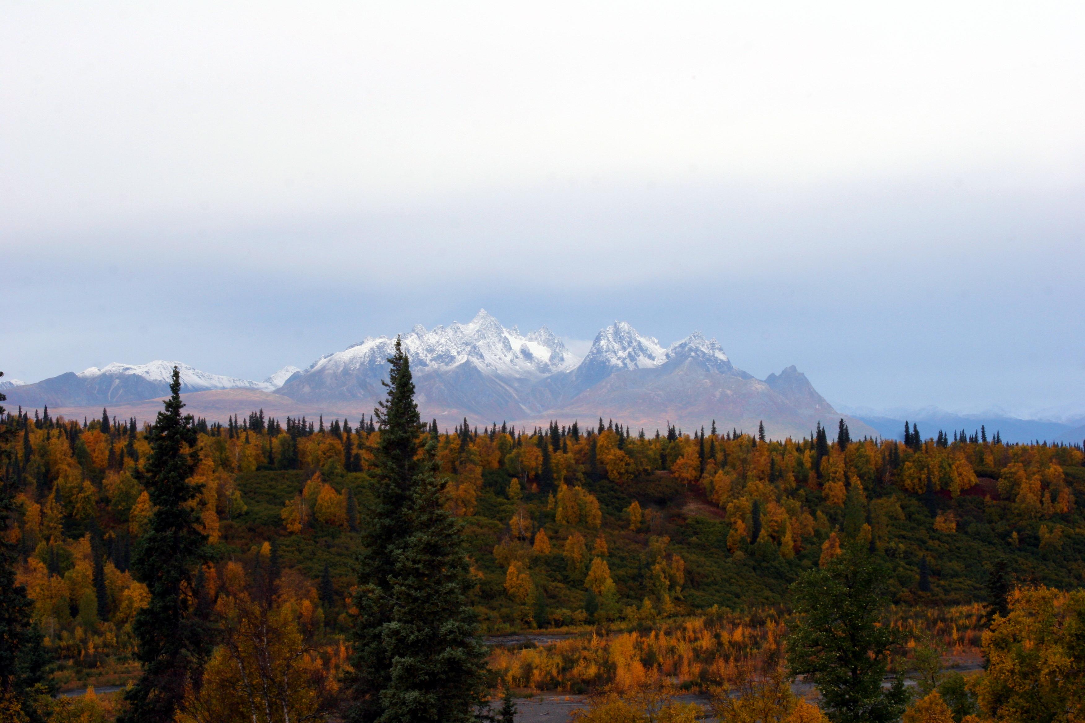 Anchorage Car Rental Discounts