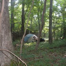 Campsite along the Appalachian Trail, Shenandoah National Park, VA