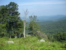 View of Shenandoah Valley from Skyline Drive, VA